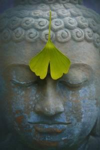 El Raciocinio y el Yoga